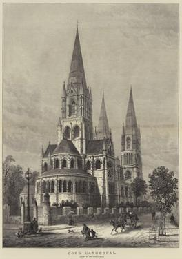 Cork Cathedral by Samuel Read