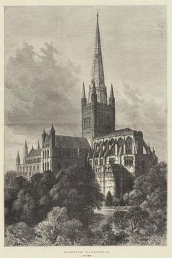 Norwich Cathedral by Samuel Read