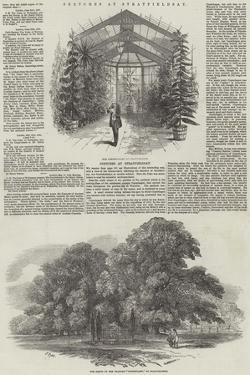 Sketches at Stratfieldsay by Samuel Read