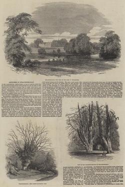 Sketches of Strathfieldsay by Samuel Read