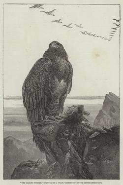 The Eagle's Throne, Exhibition of the British Institution by Samuel Read