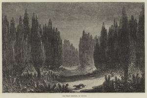 The Great Cemetery, at Scutari by Samuel Read