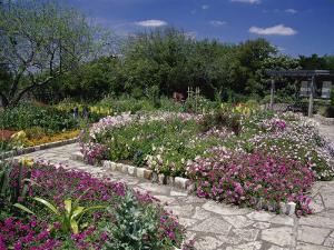 San Antonio Botanical Gardens, Texas, USA