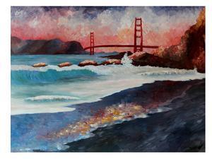 San Fran Golden Gate by M Bleichner