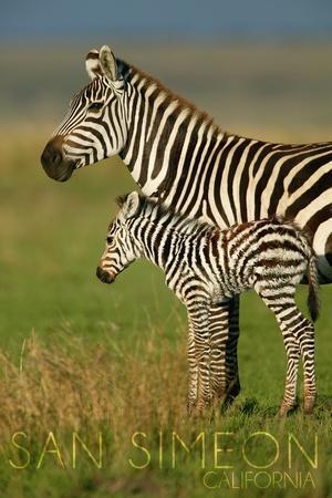 https://imgc.allpostersimages.com/img/posters/san-simeon-california-zebra-and-baby_u-L-Q1GQMME0.jpg?p=0