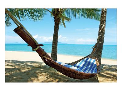 https://imgc.allpostersimages.com/img/posters/sand-beach-hammock-palm-trees_u-L-F89J8Y0.jpg?artPerspective=n