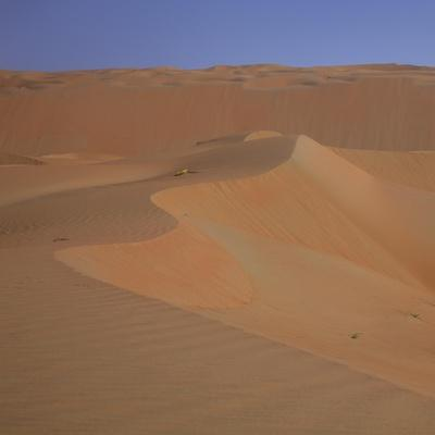 https://imgc.allpostersimages.com/img/posters/sand-dunes-in-the-desert_u-L-Q1CAYAS0.jpg?artPerspective=n