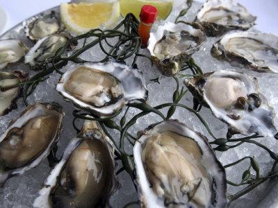 Hog Island Oysters on a Plate with Lemon, San Francisco, California