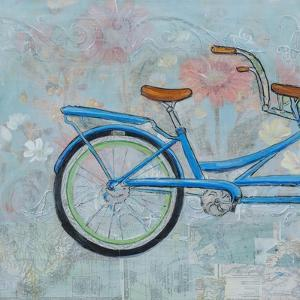 Bicycle Collage I by Sandra Iafrate