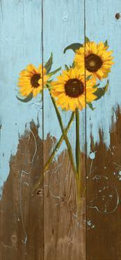 Sunflowers on Wood I by Sandra Iafrate