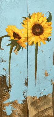 Sunflowers on Wood III by Sandra Iafrate