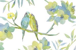 Budgie Love by Sandra Jacobs