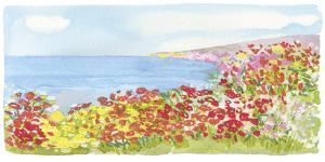 Coastal View II by Sandra Jacobs