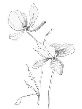 From My Garden II by Sandra Jacobs