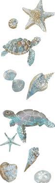 Ocean Treasures - Turtles by Sandra Jacobs