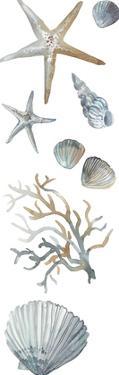 Ocean Treasures by Sandra Jacobs