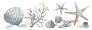 Sea Treasures by Sandra Jacobs