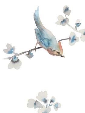 Songbird Harmony by Sandra Jacobs