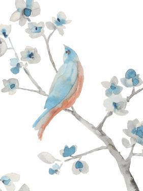 Songbird Melody by Sandra Jacobs