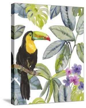 Toucan Seek by Sandra Jacobs
