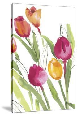 Tulip Symphony III by Sandra Jacobs