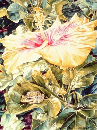 Tree Frog and White, Yellow and Pink Hibiscus, 1989