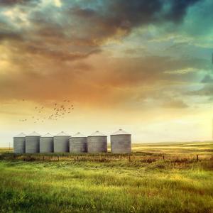 Prairie Grain Silos in Late Summer by Sandralise