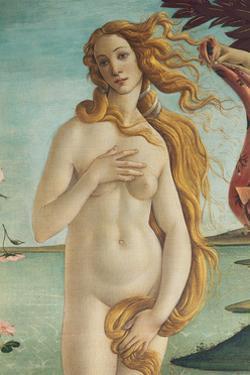 Birth of Venus, Venus by Sandro Botticelli