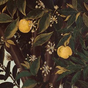 Primavera, Oranges and  blossoms by Sandro Botticelli