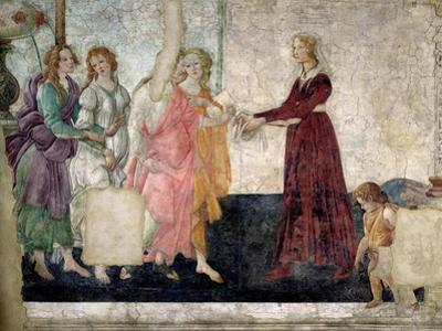 Venus and the Graces Offering Gifts to a Young Girl, 1486