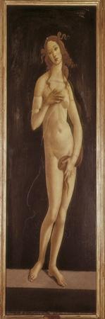 Venus Pudica by Sandro Botticelli