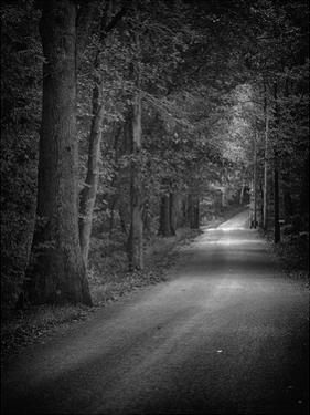 Dark Passage 2 by Sandro De Carvalho