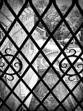 Gated View 1 by Sandro De Carvalho