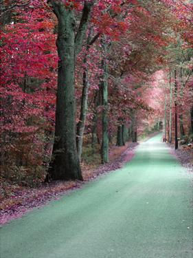 Hudson Byway 1 by Sandro De Carvalho