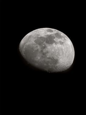 Moon Light 3 by Sandro De Carvalho