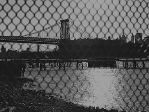 New York City Bridges 2 by Sandro De Carvalho