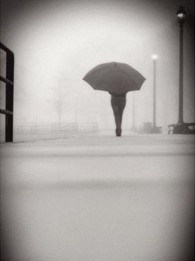The Umbrella Walker 9 by Sandro De Carvalho