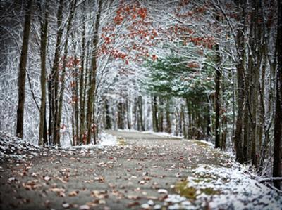 Winter's Approach by Sandro De Carvalho