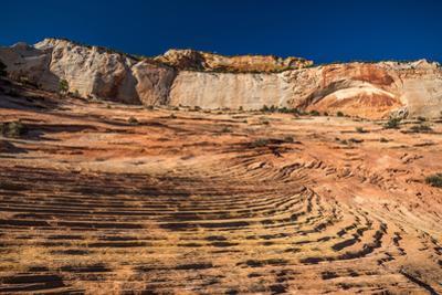 Sandstone rock formations in a desert, Zion National Park, Utah, USA