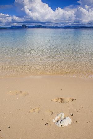 https://imgc.allpostersimages.com/img/posters/sandy-beach-and-clear-waters-in-the-bacuit-archipelago-palawan-philippines_u-L-Q12TC1P0.jpg?p=0