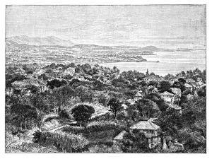 Santa Cruz Island, C1890