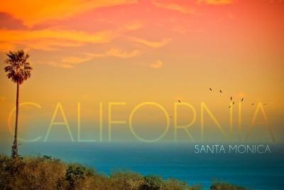 https://imgc.allpostersimages.com/img/posters/santa-monica-california-sunset-and-bird_u-L-Q1GQPA30.jpg?p=0