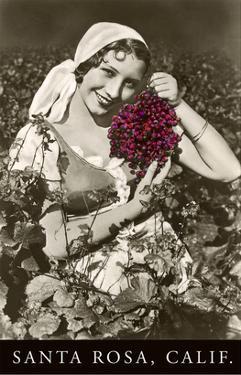 Santa Rosa, California, Woman with Grapes