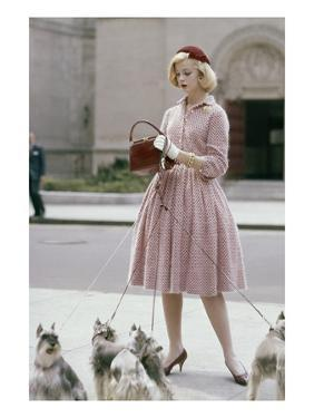 Glamour - October 1959 - Woman Walking a Pack of Dogs by Sante Forlano