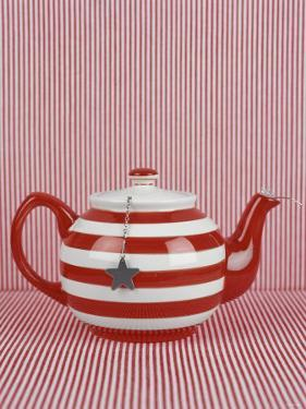Striped Teapot with Tea Ball by Sara Danielsson