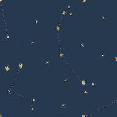 Night Sky Navy and Gold Pattern 05A by Sara Zieve Miller