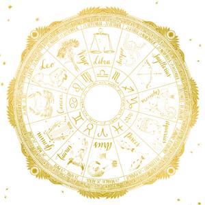 Night Sky Zodiac White and Gold by Sara Zieve Miller