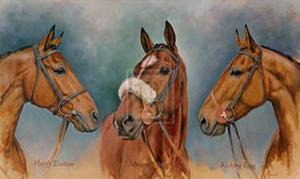 The Three Winter Kings by Sarah Aspinall