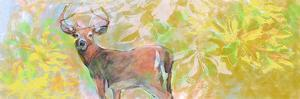 Deer With Magnolia by Sarah Butcher