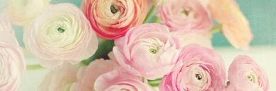 Blushing Blossoms Panel by Sarah Gardner
